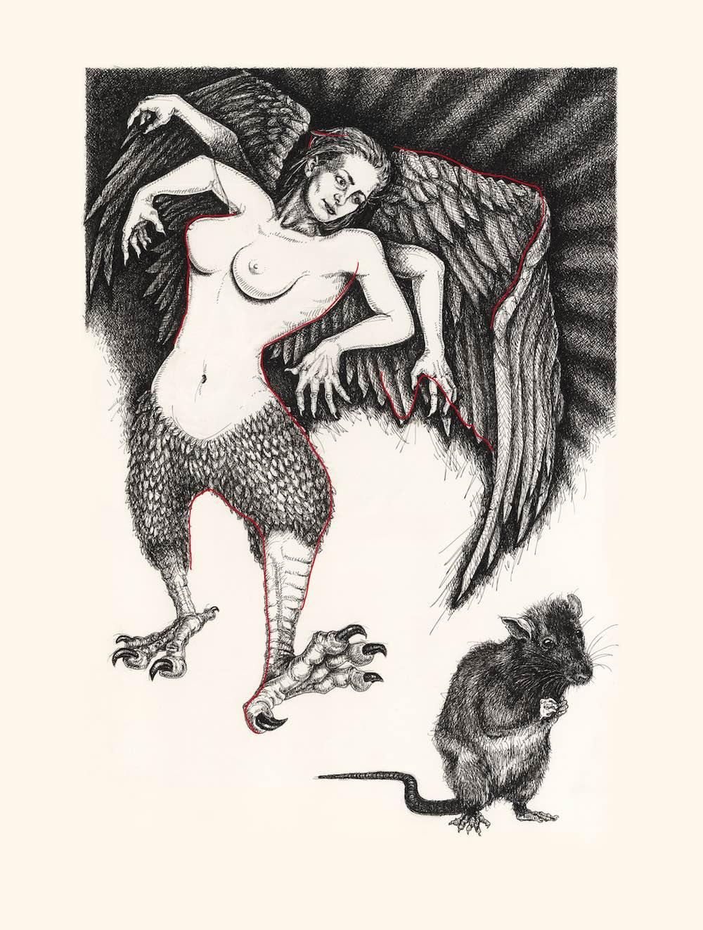 bird and rat2 red sm