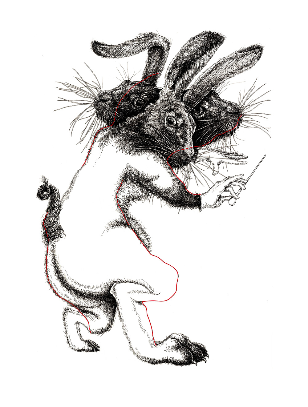 rabbitsweb